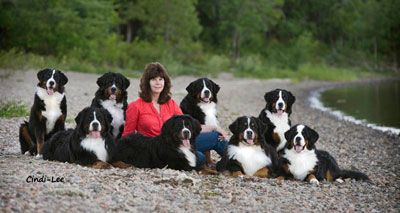 Anne with Backcountry Bernese - Photograph: Cindi-Lee Campbell