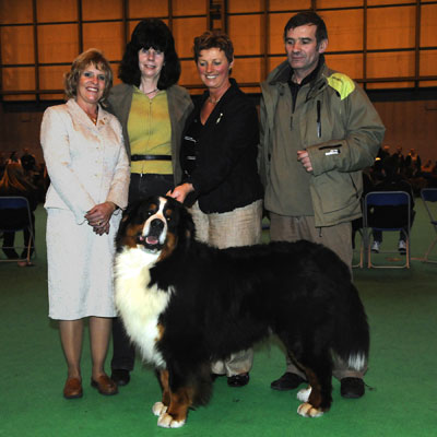 Adesa, Legecium and Stokerybos at Crufts 2009