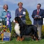Ch. Emerson van't Stokerybos - Reserve Winners Dog